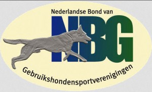 nbg links